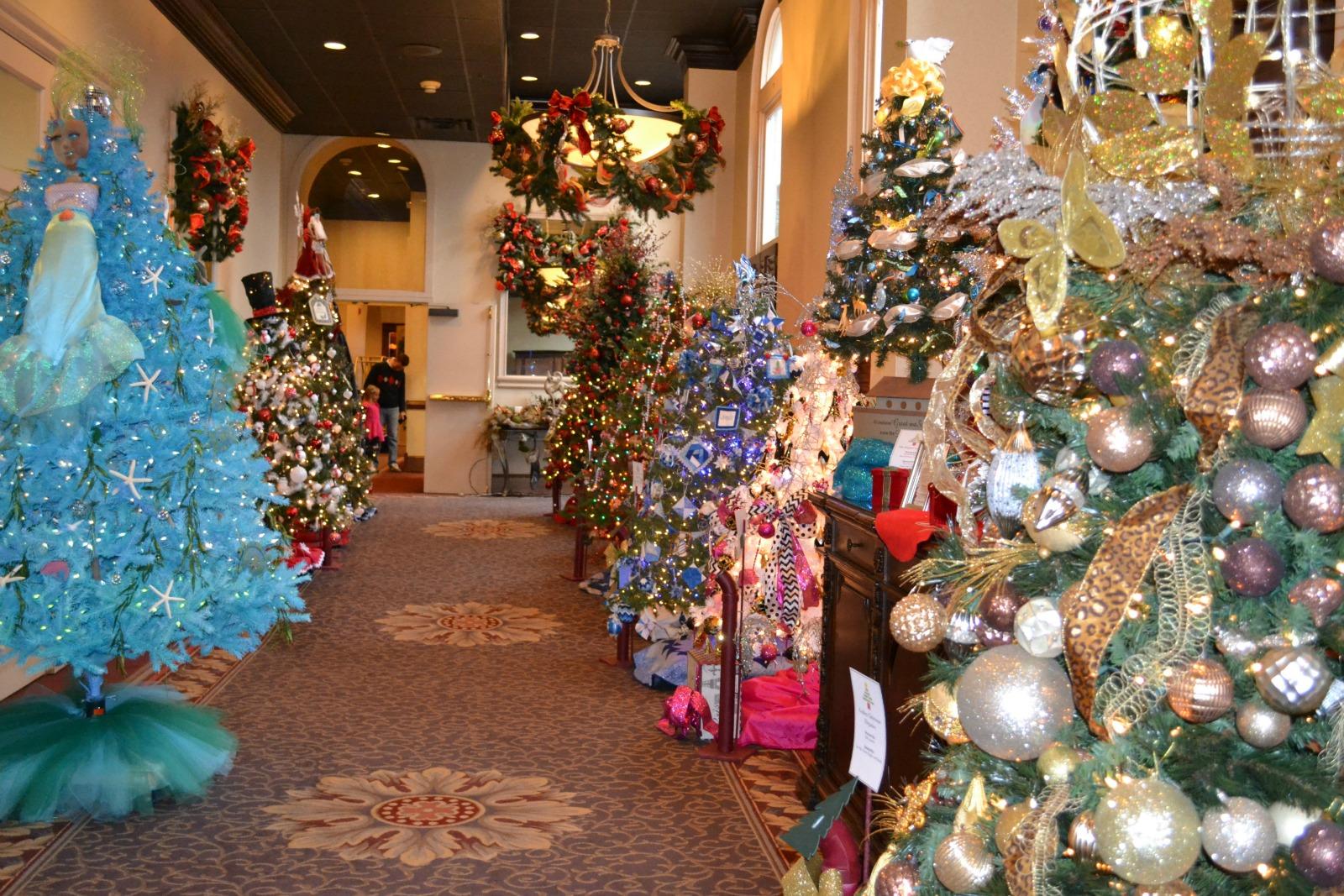 blennerhassett tree, christmas trees