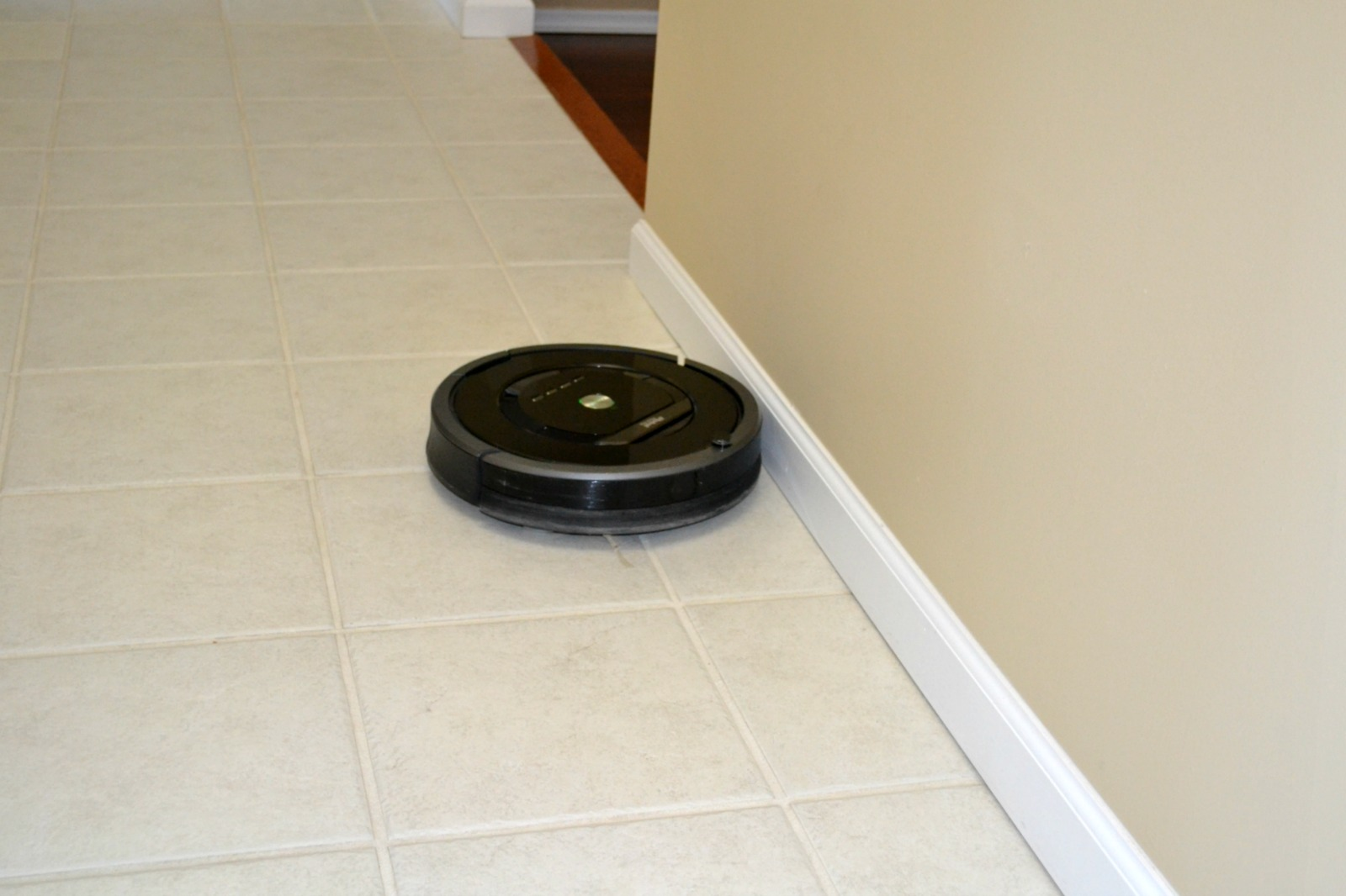 Roomba 880 Product Review Grandma Honey S House