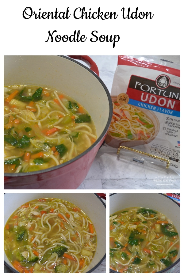 Oriental Chicken Udon Noodle Soup is a warm bowl of rich, seasoned broth, loaded with rotisserie chicken, asian style vegetables and delicious Fortune Chicken Flavored Udon Noodles
